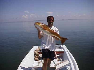 Southern belle fishing tours book a charter fishing trip for Fishing license ms